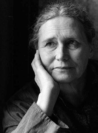 Doris lessing 1 980 2500